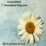 Le mie giustificazioni e…1° International Linky Party by Le passioni di Sara