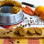 Torta di carote, mandorle e arancia (da una ricetta di Marco Bianchi)